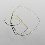 Gräs med spegling - Christina Andersson