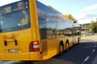 Buss - Paula Arvola
